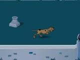 Scooby Doo: 1000 Graveyard Dash