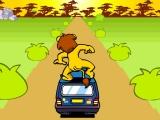Flash игра для девочек Safari Park Apeldoorn
