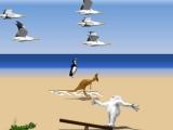 Flash игра для девочек Yetisports 4 - Полёт на альбатросе