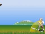 Flash игра для девочек Yetisports 5 - Крикет