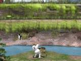 Flash игра для девочек Yetisports 9 - Стрельба по пингвинам