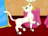 Flash игра для девочек Мастерская котят