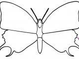 Flash игра для девочек Раскраски: The Butterfly 2