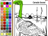 Goose Coloring