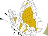Flash игра для девочек Раскраски: Big Butterfly