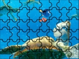 Buscando a Nemocon las Tortugas