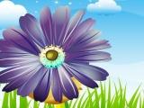 Dress My Flowers
