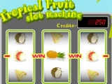 Flash игра для девочек Tropical Fruit slot machine