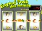 Flash игра для девочек Tropical Fruit slot machine