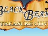 Flash игра для девочек Black Beaks