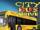 Flash игра для девочек City Bus Drive