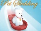 Flash игра для девочек Pet Sledding - Животные на санках