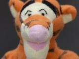 Пазлы: Тигра