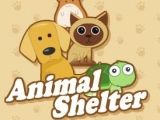 Animal Shelter - Приют для животных