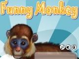 Flash игра для девочек Уход за обезьянкой