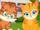 Flash игра для девочек Alley Cat Choir
