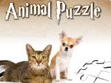 Пазлы: Собери животных
