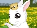 Baby Bunny Dress Up