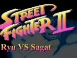 Flash игра для девочек Street Fighter 2 - Ryu Vs Sagat