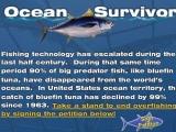 flash игра Ocean Survivor