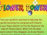flash игра Flower Power