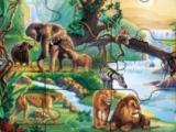 Flash игра для девочек Rain Forest Jigsaw Puzzle