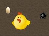 Save the Chicks