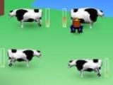 Milk panid