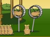 Flash игра для девочек Hamster Flight