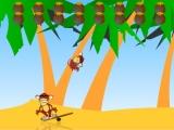 Flash игра для девочек Crazy Monkeys