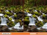 Лесные водопады