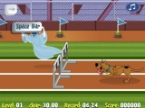 flash игра Scooby Doo Hurdle Race