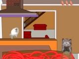 Feline Crisis