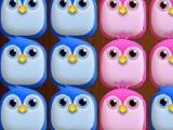 Birds Cross Beng!!!