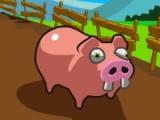 flash игра Paddy the Pig