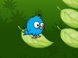 Way 2 Nest