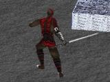 flash игра 3D Flash Ninja