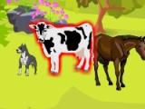 flash игра Smiley Deco Farm Field