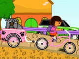 flash игра Dora Pet Shop