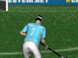 flash игра Field Hockey