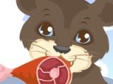 flash игра Lion Care