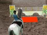 flash игра Horse Jumping 3D