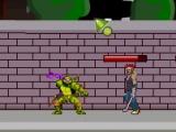 flash игра Ninja Turtle